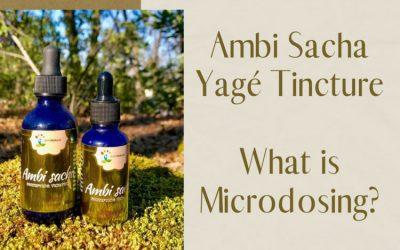 Ambi Sacha Yagé Tincture-What is Microdosing?